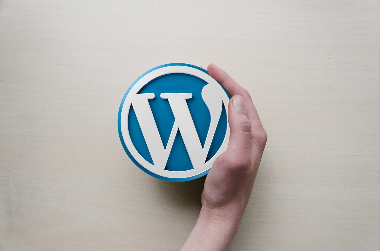 WordPress com vs org