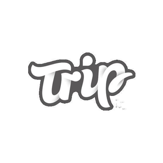 Trip travel - website